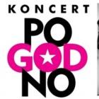 """POGODNO / premiera nowej płyty """"Sokiści chcą miłości"""" - zdjęcie 2/2"""