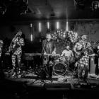 Nat Osborn Band / Wirydarz CK - zdjęcie 1/1