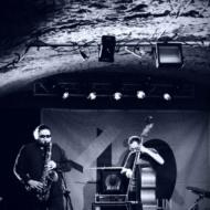 Choroby Pszczół & Jacek Steinbrich (PL) / 10. Lublin Jazz Festiwal / 20.04.2018r. / zdj. Wojtek Nieśpiałowski - zdjęcie 12/13