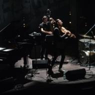 Adam Bałdych Quartet (PL) / 11 Lublin Jazz Festiwal / 28.04.2019r. / fot. Dorota Awiorko - zdjęcie 10/11